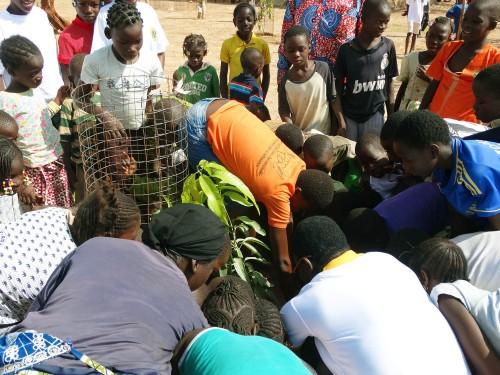 Lydia Ludic Burkina Faso et les enfants de Pissy plante des arbres à Ouagadougou