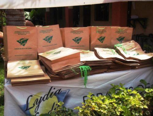 Sacs biodégradables : Lydia Ludic Burkina Faso se met au vert - Octobre 2013